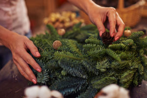 how to care for evergreens